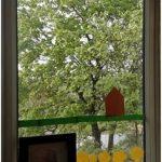 karolina-caikauskaite10-lat-mickuny
